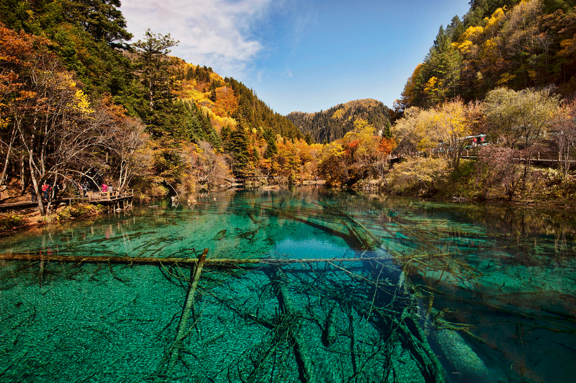 "Slide 5 of 52: ""Five Flower Lake"" is located within the spectacular Jiuzhaigou Nature Reserve, a UNESCO World Heritage site. Its crystal-clear waters reveal fallen tree trunks lying on the lake bottom."