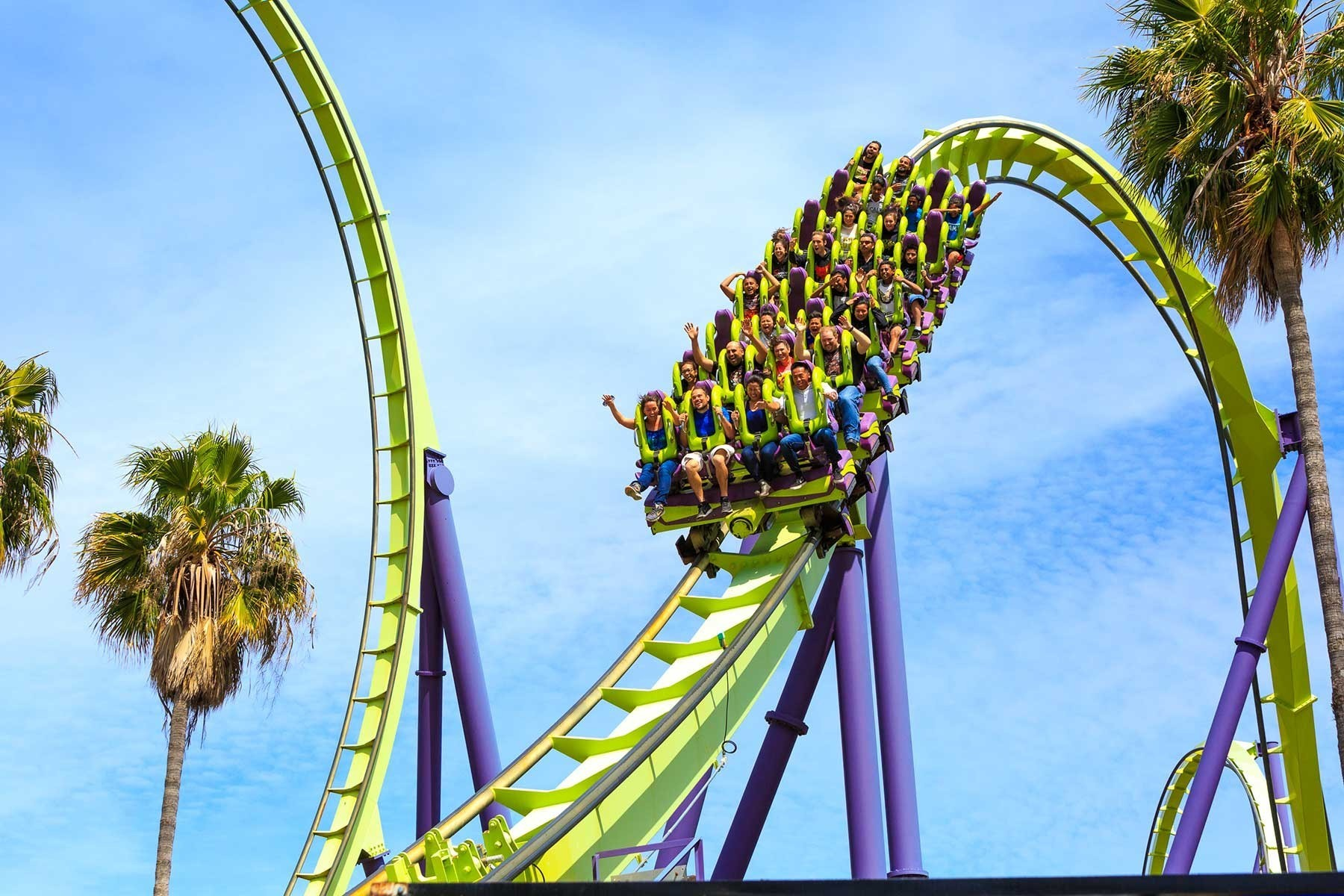 Slide 10 of 19: Northern California's longest and highest roller coaster is the adrenalin-charged Medusa at Six Flags Discovery Kingdom. A 46-metre (150-foot) climb and then a drop just as steep lead to you getting catapulted through one of the world's tallest vertical loops (at 39 metres or 128 feet high). Riders can look forward to feeling their stomachs do flips during the roller coaster's dive loop and zero-G roll, too.