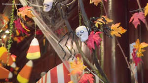 a vase of flowers on a table: Staying safe and having fun while celebrating Halloween