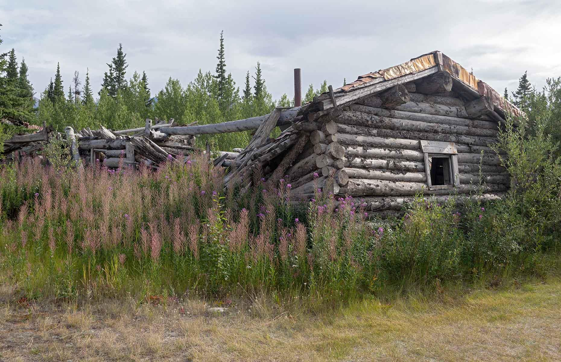 Slide 30 of 41: A typical gold-town-turned-ghost-town, Silver City, in the southwestern reaches of the Yukon, was built up in the early 20th century. There was a road house, police barracks and cabins here in the 1900s, and their remnants are still collected on the banks of Lake Kluane today. The prospectors, however, are long gone.