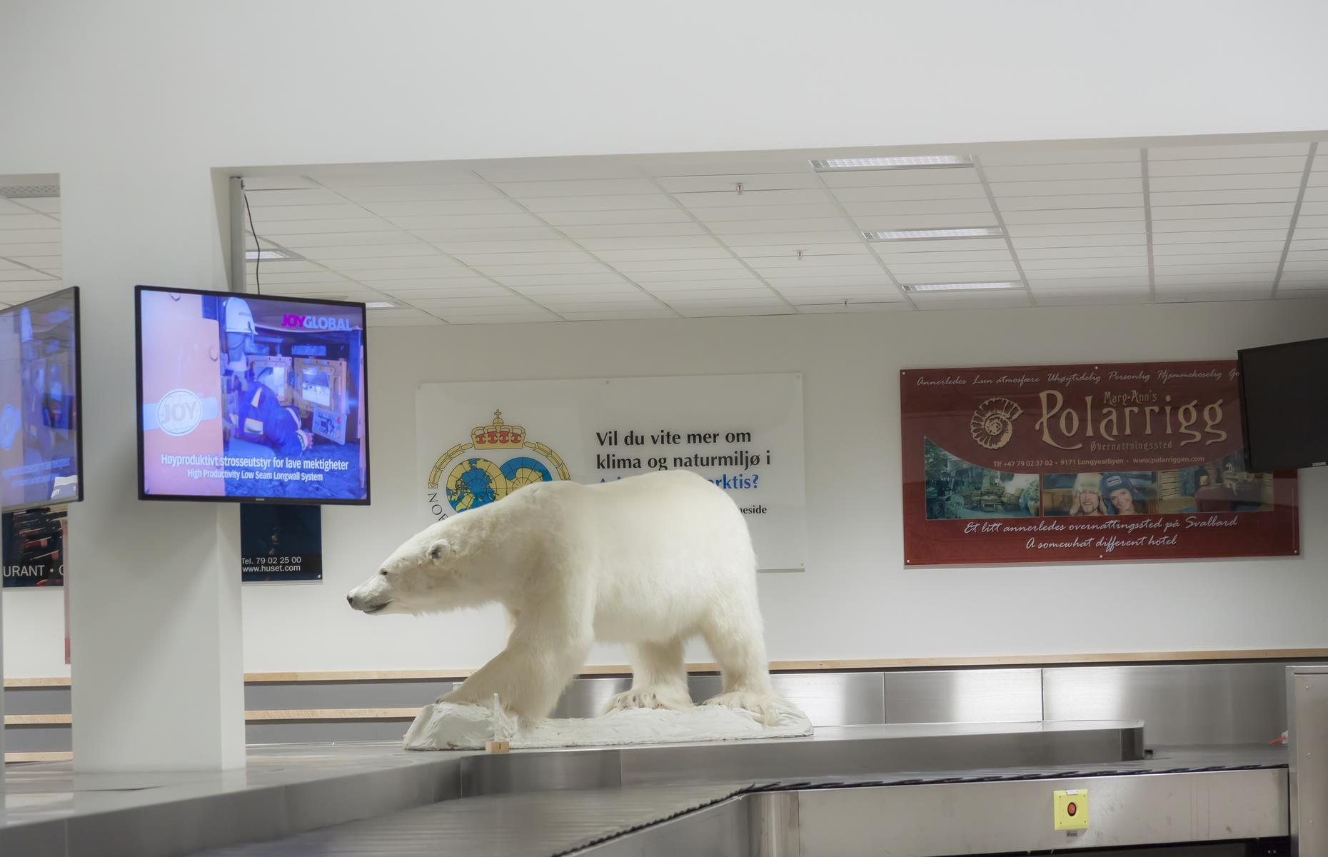 Slide 37 of 44: Located just to the northwest of the archipelago's largest settlement, Longyearbyen, Svalbard Airport operates domestic flights only between Oslo and Tromsø. In keeping with the Arctic theme, there's a gigantic stuffed polar bear keeping a watchful eye over the baggage carousel. After all, polar bears outnumber humans in this far-flung frozen wilderness. From HEL to CIA: discover the hilarious real airport codes