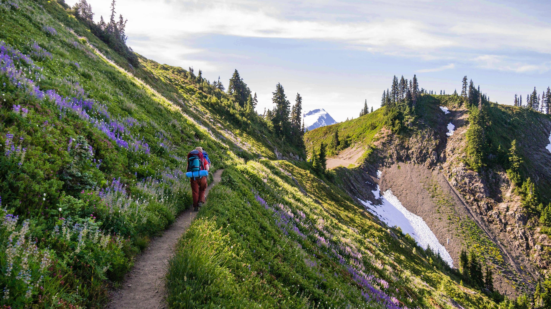 Slide 2 of 5: 9.Olympic National Park, Washington State (2.5 million visitors)