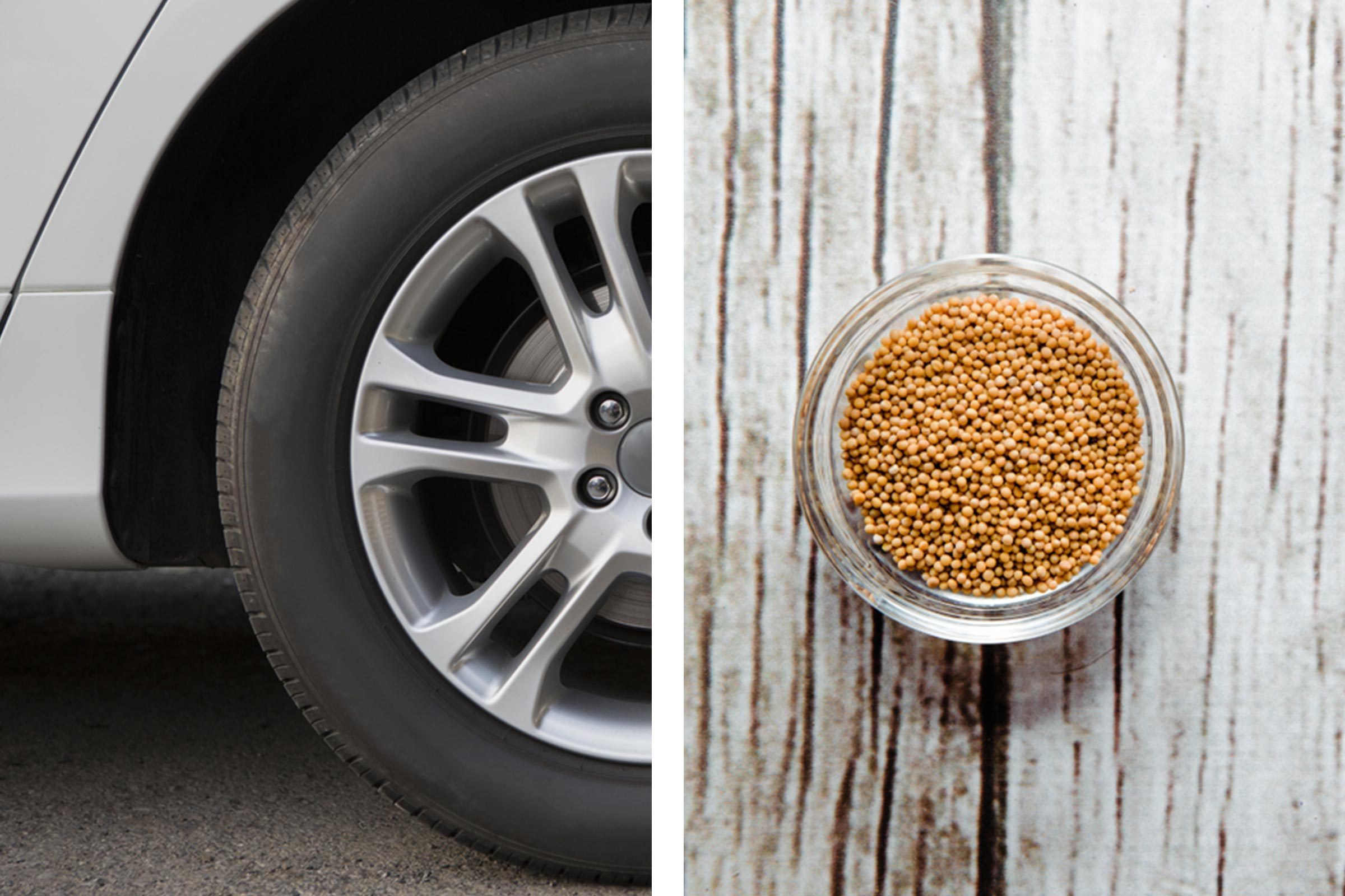 Slide 8 of 21: Your pet may have managed to outrun that pesky skunk, but it still spent the evening lurking under your car. Dissolve a cup of dried mustard into three gallons of water and splash the solution over your vehicle's tires and undercarriage.