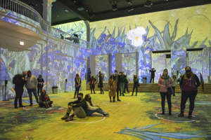 a group of people that are standing in the grass: Immersive Van Gogh Digital Art Shows Coming to 13 U.S. Cities