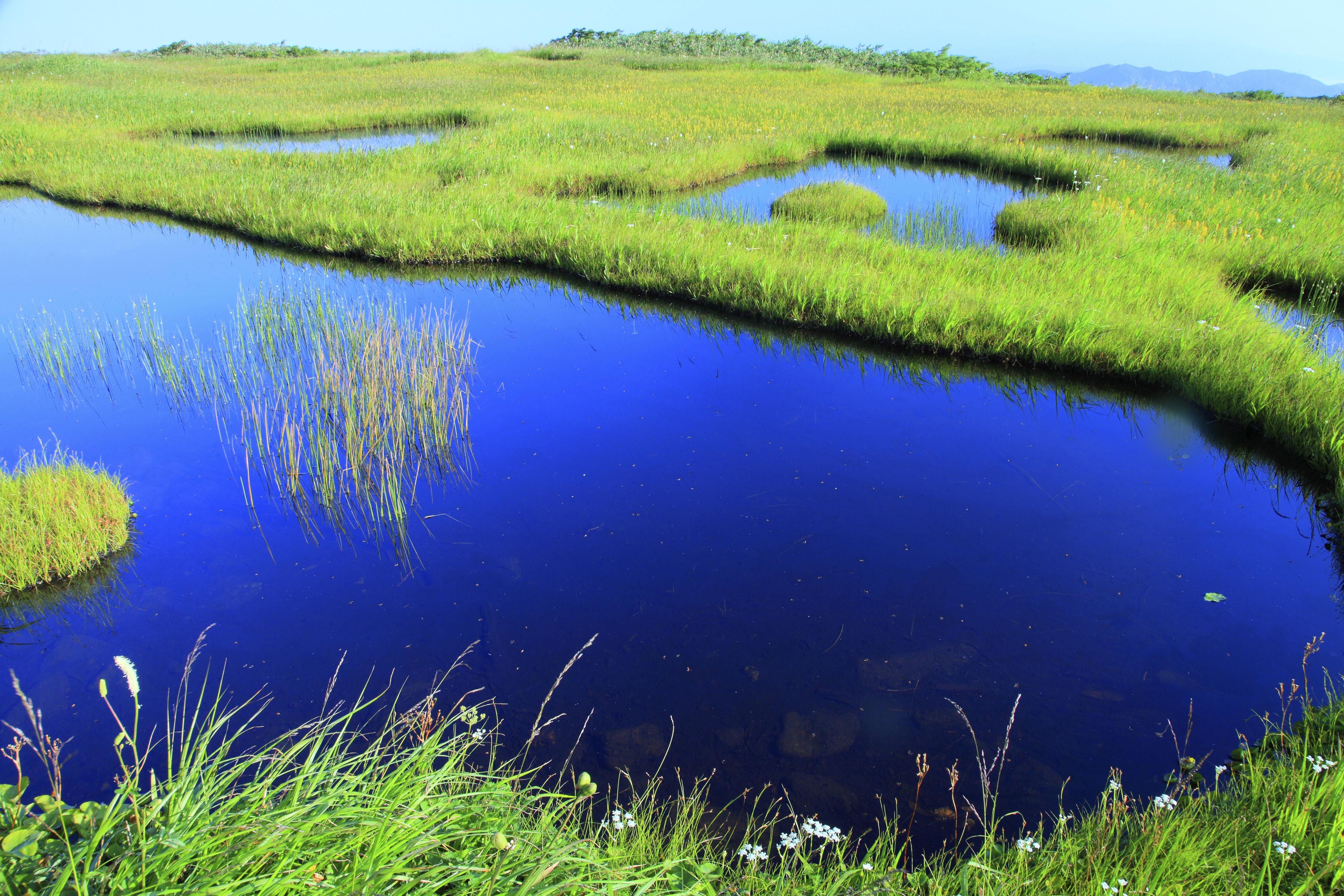 Slide 9 of 41: Wetlands in Higashitagawa County, Yamagata Prefecture
