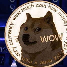 a close up of a sign: A concept image of Dogecoin (DOGE) with the Shiba Inu and text on a gold token.