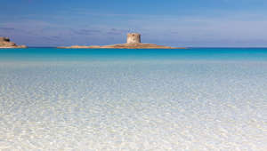 Beautiful turquoise blue mediterranean Pelosa beach near Stintino,Sardinia, Italy.