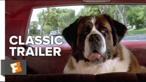 Subscribe to CLASSIC TRAILERS: http://bit.ly/1u43jDe Subscribe to TRAILERS: http://bit.ly/sxaw6h Subscribe to COMING SOON: http://bit.ly/H2vZUn Like us on FACEBOOK: http://bit.ly/1QyRMsE Follow us on TWITTER: http://bit.ly/1ghOWmt  Beethoven (1992) Official Trailer - Bonnie Hunt Dog Movie HD  A slobbering St. Bernard becomes the center of attention for a loving family, but its veterinarian secretly wants to kill him.  Welcome to the Fandango MOVIECLIPS Trailer Vault Channel. Where trailers from the past, from recent to long ago, from a time before YouTube, can be enjoyed by all. We search near and far for original movie trailer from all decades. Feel free to send us your trailer requests and we will do our best to hunt it down.