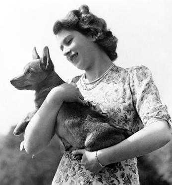 Slide 1 of 20: File photo dated 21/09/50 of Princess Elizabeth (now Queen Elizabeth II) holding a Corgi, as the breed have been the Queen's life-long companions - small dogs described as having big personalities.
