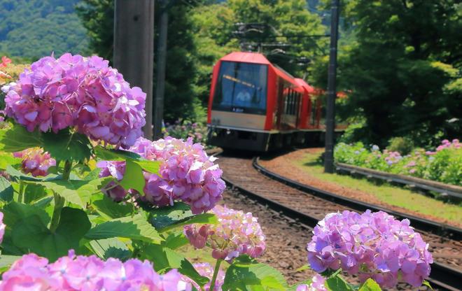 21 枚のスライドの 8 枚目: Subway train, Tokyo Metro, Marunouchi Line, Tokyo, Japan.