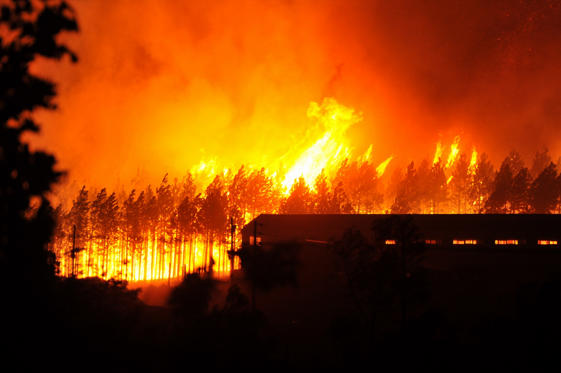 Slide 4 of 24: Raging fires at the Longmore Forest on June 07, 2017 in Knysna, South Africa. More than 10 000 people were forced to flee their homes overnight as fires fuelled by storm winds ripped through the Western Cape coastal town.