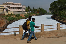 After Bengaluru, toxic froth haunts Hyderabad