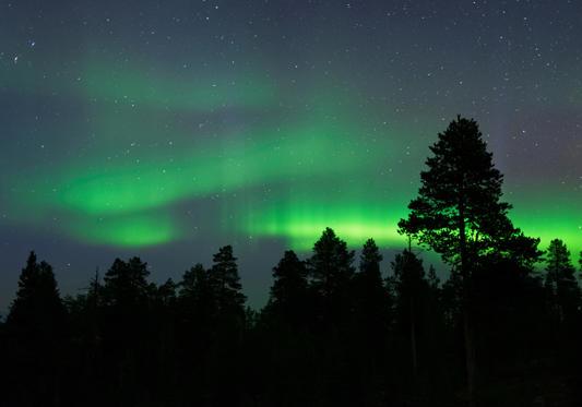 Diapositive 3 sur 9: <p>Pour voir des aurores boréales en Norvège, c'est assez facile. On peut les observer essentiellement en automne et en hiver, quand le ciel est bien dégagé. L'avantage sur un bateau, c'est aussi de pouvoir être suffisamment éloigné des côtes et donc des lumières artificielles. On peut en voir vers Trondheim, mais pour être sûr de ne pas les manquer, il faut dépasser la ligne (imaginaire) du cercle polaire et aller à Tromso, voire jusqu'aux îles Lofoten, desservis par Hurtigruten.</p>