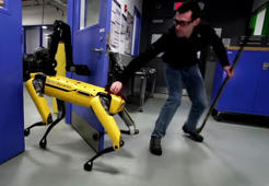 Robodog fights off human owner to escape laboratory