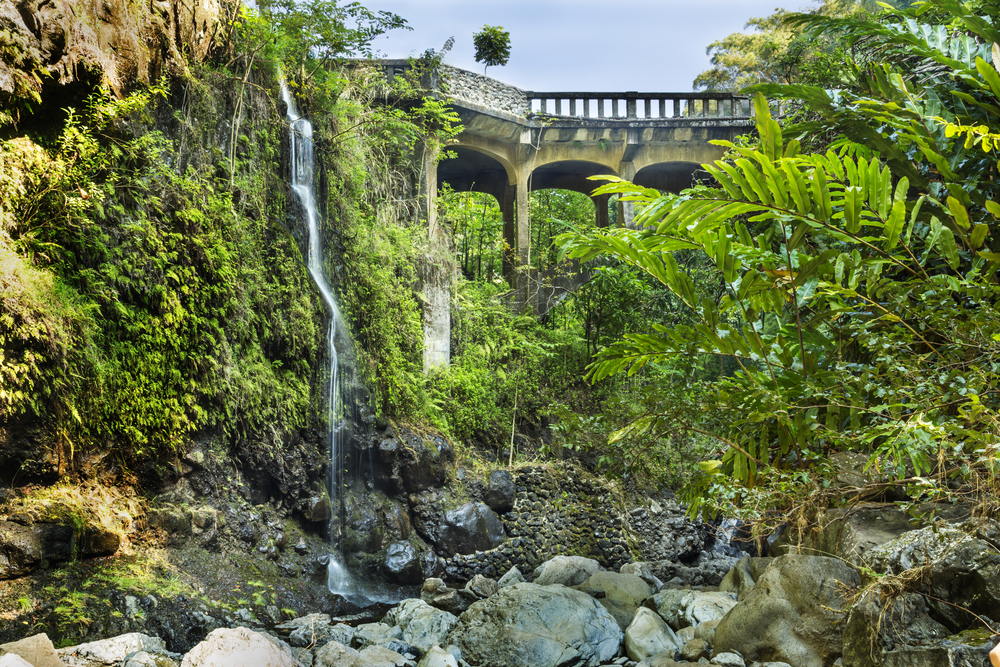 Hana Highway travels along Maui's coastline and consists of 620 sharp turns and 59 bridges. You'll experience a variety of views, including waterfalls, rain forests, and, of course, the ocean.
