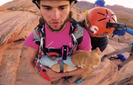 Dog go base-jumping over cliff with adrenaline junkie owner