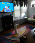 Puppy gets super excited when pet food commercial comes on