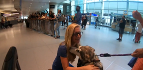 Dog freaks out when reuniting with her humans
