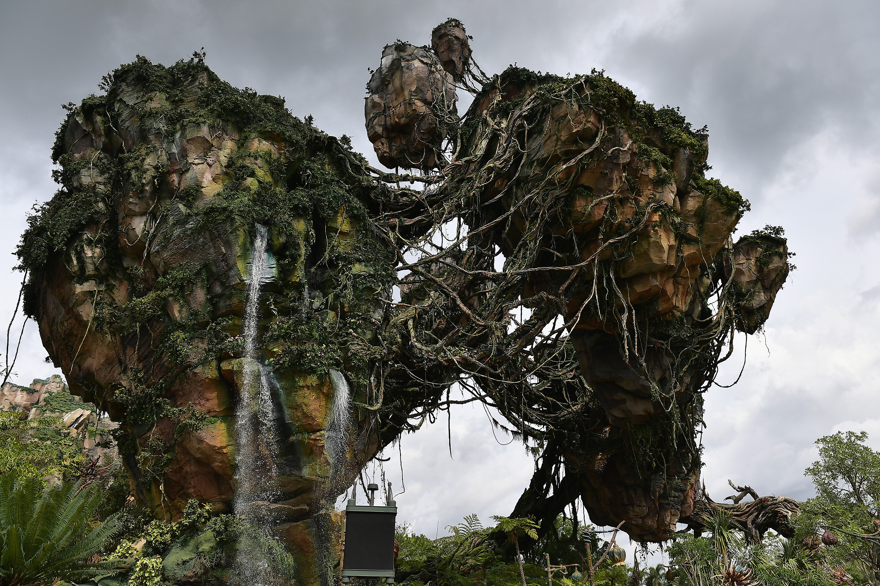 Slide 8 of 77: ORLANDO, FL - MAY 23:  General views the Pandora The World Of Avatar Dedication  at the Disney Animal Kingdom on May 23, 2017 in Orlando, Florida.  (Photo by Gustavo Caballero/Getty Images)