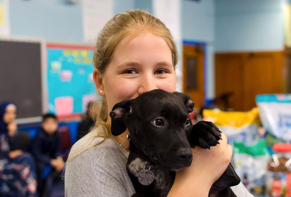 Assured, that abby teacher s pet apologise