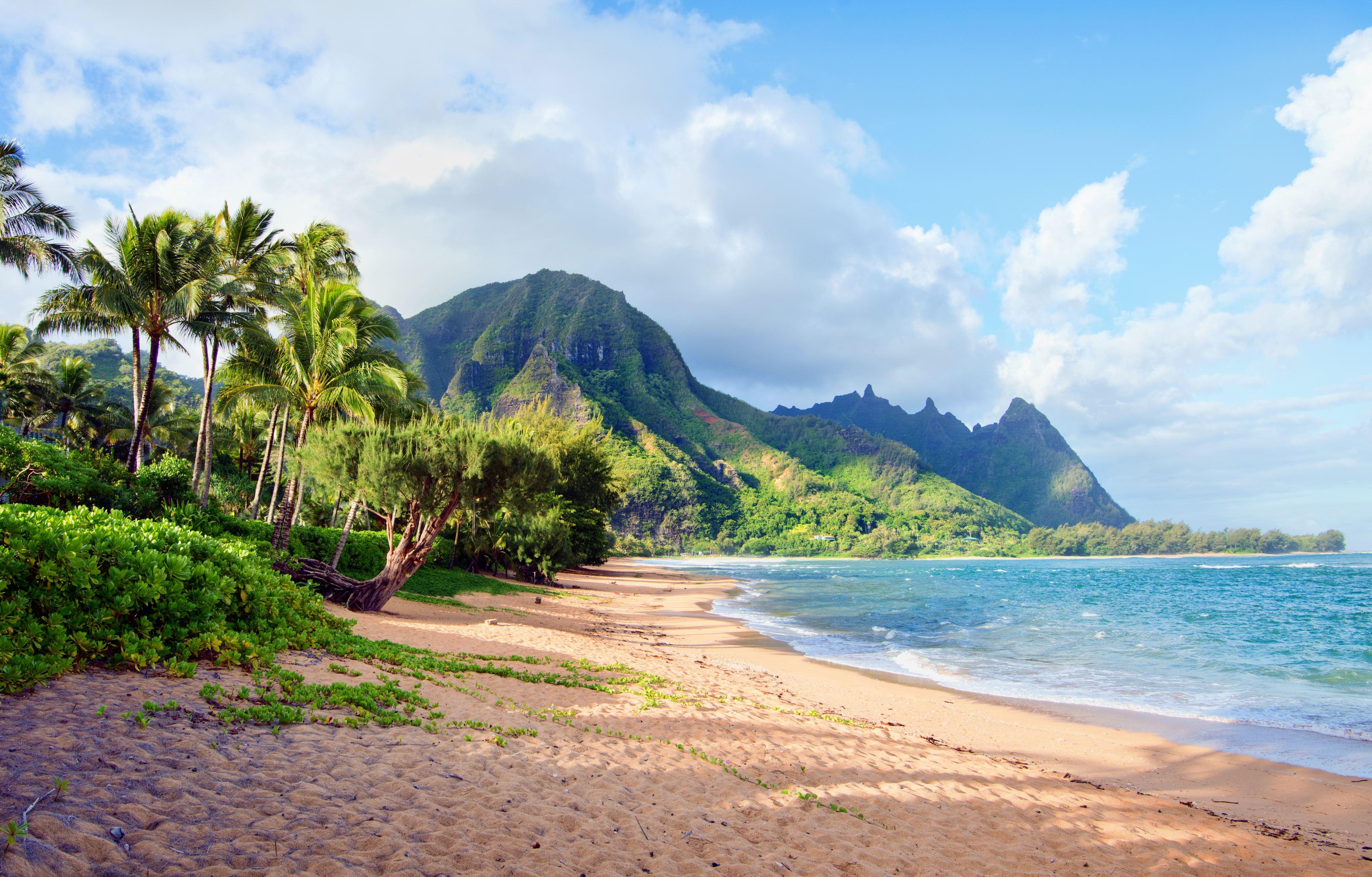 Slide 12 of 23: Tropical palm tree beach - Tunnels beach in Heana,