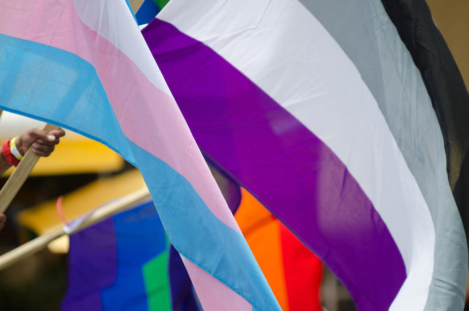 Asexual dating canada