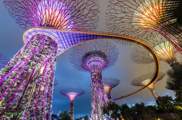 Slide 2 de 24: Garden by the bay,Singapore