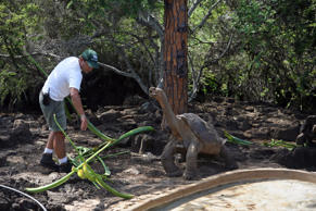 CAPTION: SANTA CRUZ, GALAPAGOS ISLANDS, ECUADOR - FEB 28: Lonesome George, a Pinta giant tortoise, and the last of his kind on February 28, 2009 at the Charles Darwin Research Station in Santa Cruz, Galapagos. He is probably from 60 to 90 years old and was found on Pinta in 1971. Before then, scientists thought the Pinta species was extinct. Two females of slightly different species live in his enclosure. The hope is that he will successfully breed with them - but so far, the eggs have not been fertile. (Photo by Melanie Stetson Freeman/The Christian Science Monitor via Getty Images)