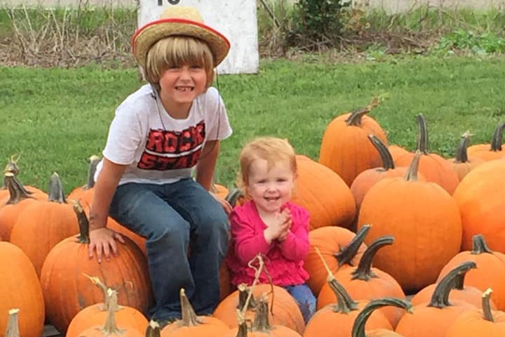 Michigan boy, 6, sells pumpkins to raise money for diabetic service dog