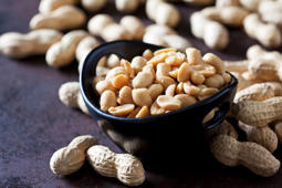 Could this be why so many Americans are allergic to peanuts?