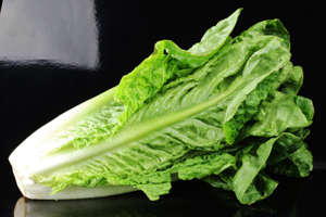 Romaine lettuce could be contaminated and should be thrown away, CDC advises.