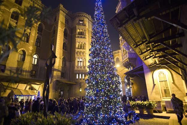 Photos Stunning Christmas Trees Around The World
