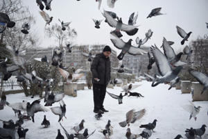 Pigeons fly in front of a man after a snowfall at the northern port city of Thessaloniki, Greece