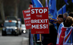 Pro-European demonstrators protest outside parliament in London