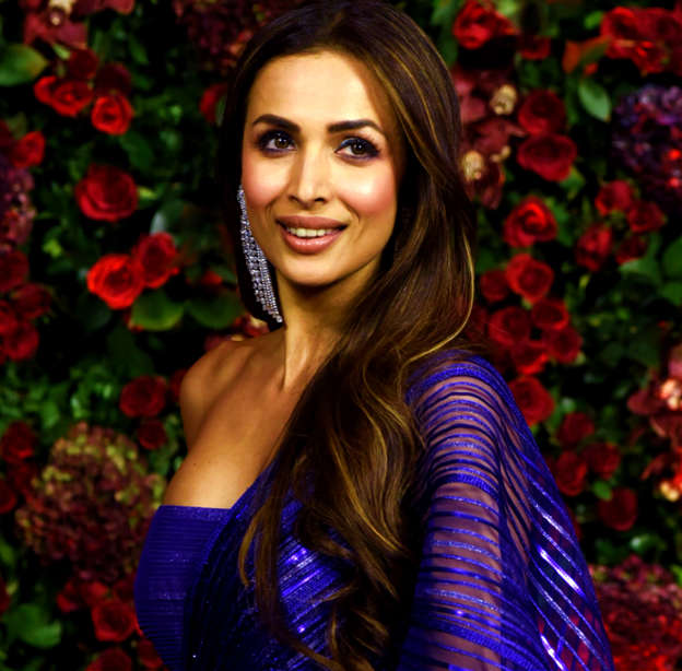 Malaika Arora trolled again, this time for wearing a saree!