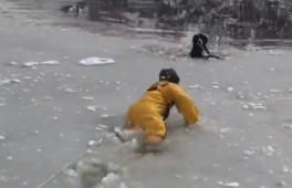 Brave firefighter saves dog stuck in frozen pond
