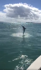Spinner shark jumps in air next to fisherman's boat