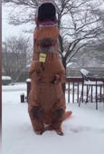 US woman 'reports' weather in T-Rex costume