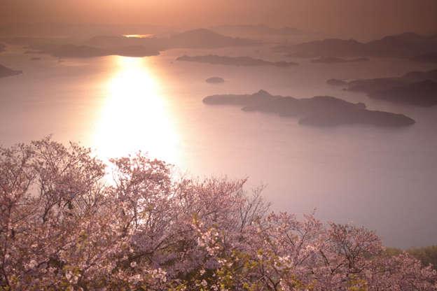 24 枚のスライドの 23 枚目: Seto Inland Sea with Cherry tree