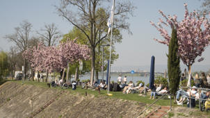 junge Leute geniessen den Frühling am Victor Hugo Ufer am Rhein in Mainz am Bootshaus des Ruderclubs   (Photo by Fishman/ullstein bild via Getty Images)