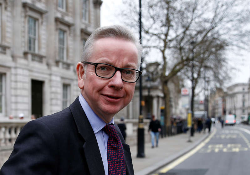Britain's Secretary of State for Environment, Food and Rural Affairs Michael Gove is seen outside Downing Street in London, Britain March 22, 2019. REUTERS/Henry Nicholls