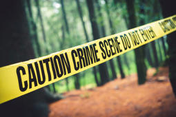 Crime scene tape in the woods / Selective focus