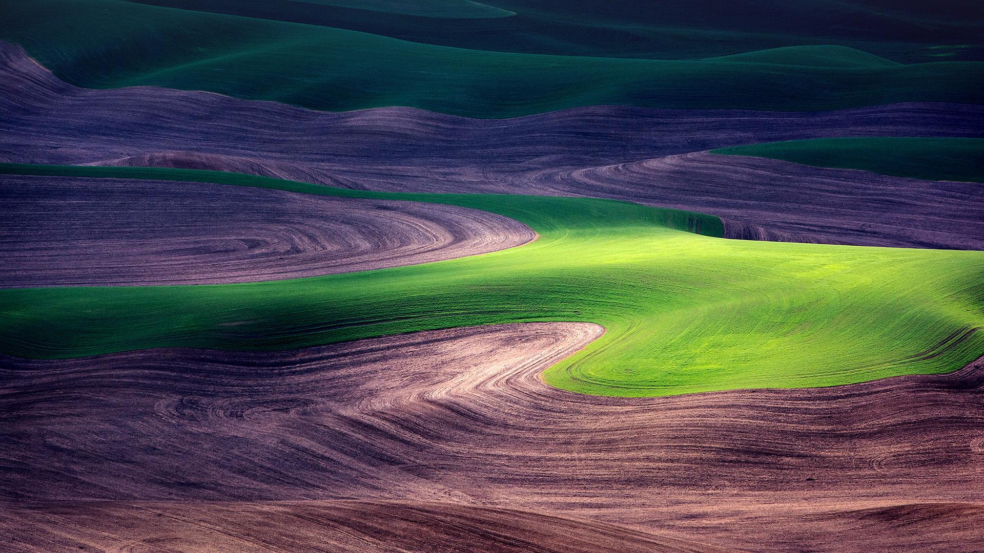 Slide 39 of 41: 0816_POA_B3_LandscapePalouseWA_500px-74136073_1920x1080