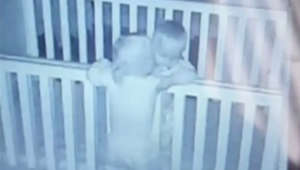 Way too cute: Baby monitor captures twin boys hugging before naptime