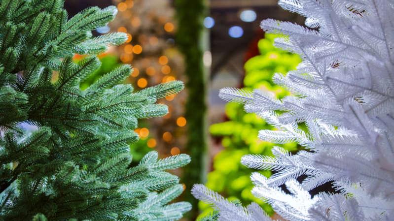 Γιατί τα αληθινά Χριστουγεννιάτικα δέντρα είναι καλύτερα από τα πλαστικά