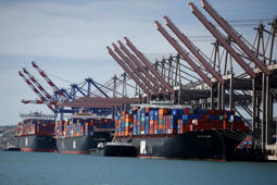 Container ships sit in berths at the Port of Los Angeles, California.