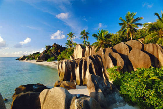 The epitome of a tropical paradise, the Seychelles is a collection of around 115 islands in the Indian Ocean and home to numerous luxury resorts. Yet the islands are in danger due to beach erosion, after already seeing a devastating coral die-off. Some experts believe that in around 50 years, the entire archipelago could be submerged.