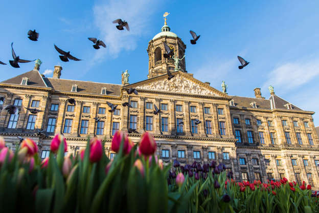 Slide 10 of 20: Royal Palace of Amsterdam, Netherlands