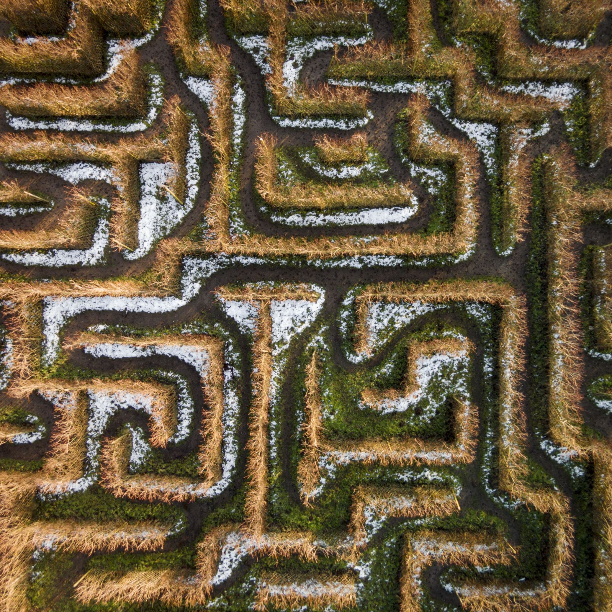 Slide 43 of 100: Labyrinth and maze drone pictures, Lithuania  - 2016 Maze in Anyksciai, Lithuania