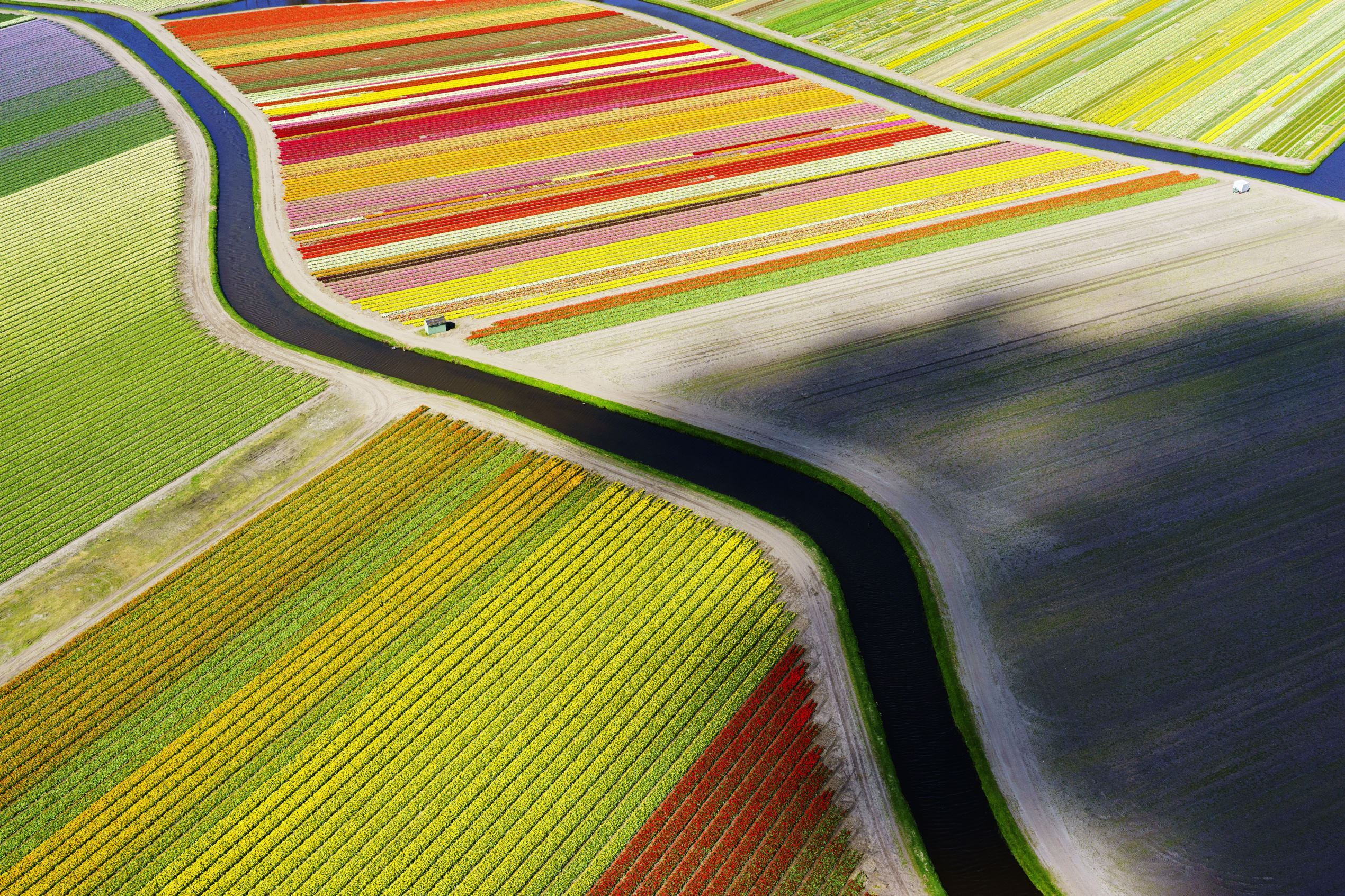 Slide 33 of 41: Aerial shots of tulip fields, Sassenheim, Netherlands - Apr 2015 Aerial shot of the tulip fields near Sassenheim, taken using a drone